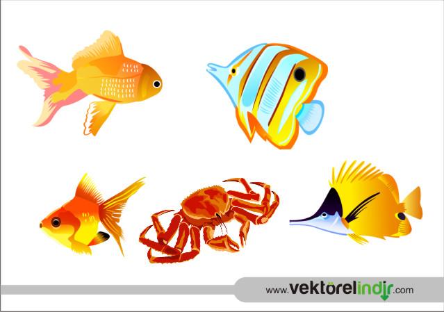 Deniz Ürünleri, Balık, Yengeç