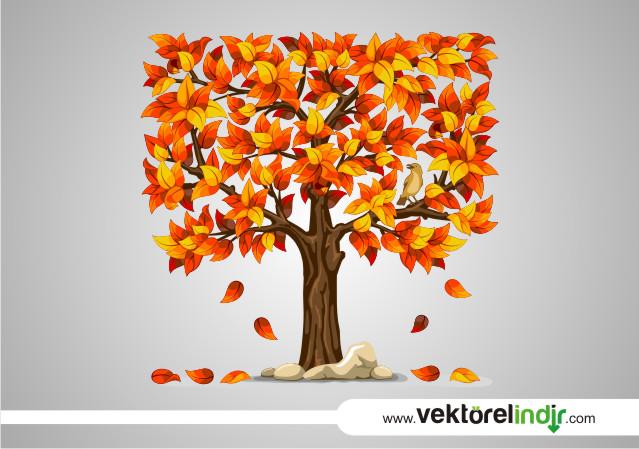 Sonbahar Ağacı Vektörel