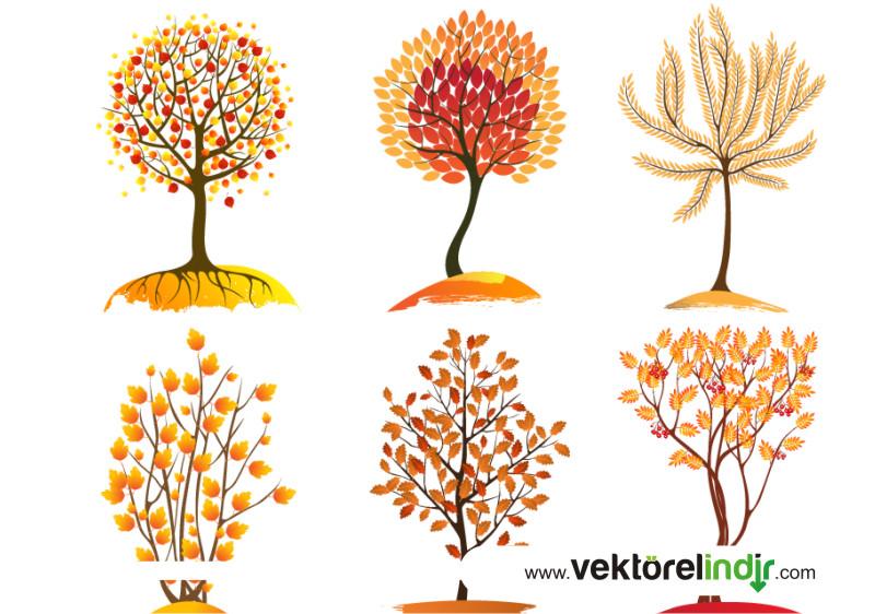 Ağaç Vektörel, Sonbahar, Ağaçları