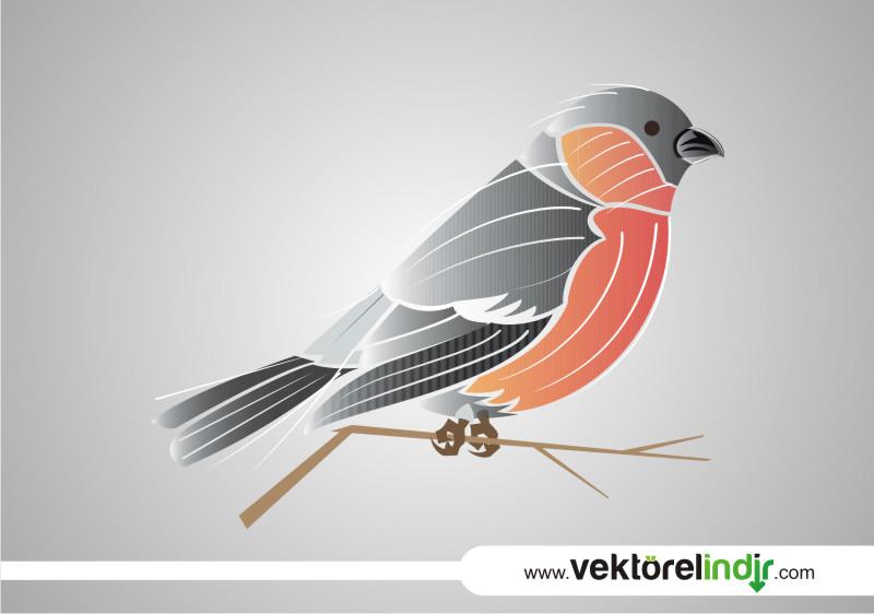 Vektörel Kuş
