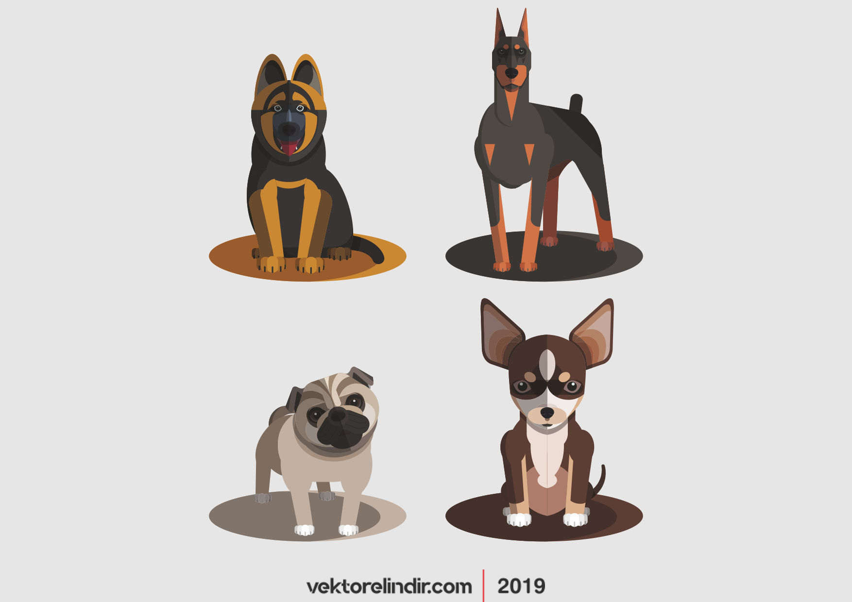 Köpek, Doberman, Vektör, Pitbull