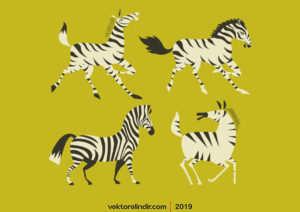 Zebra, Hayvan, At
