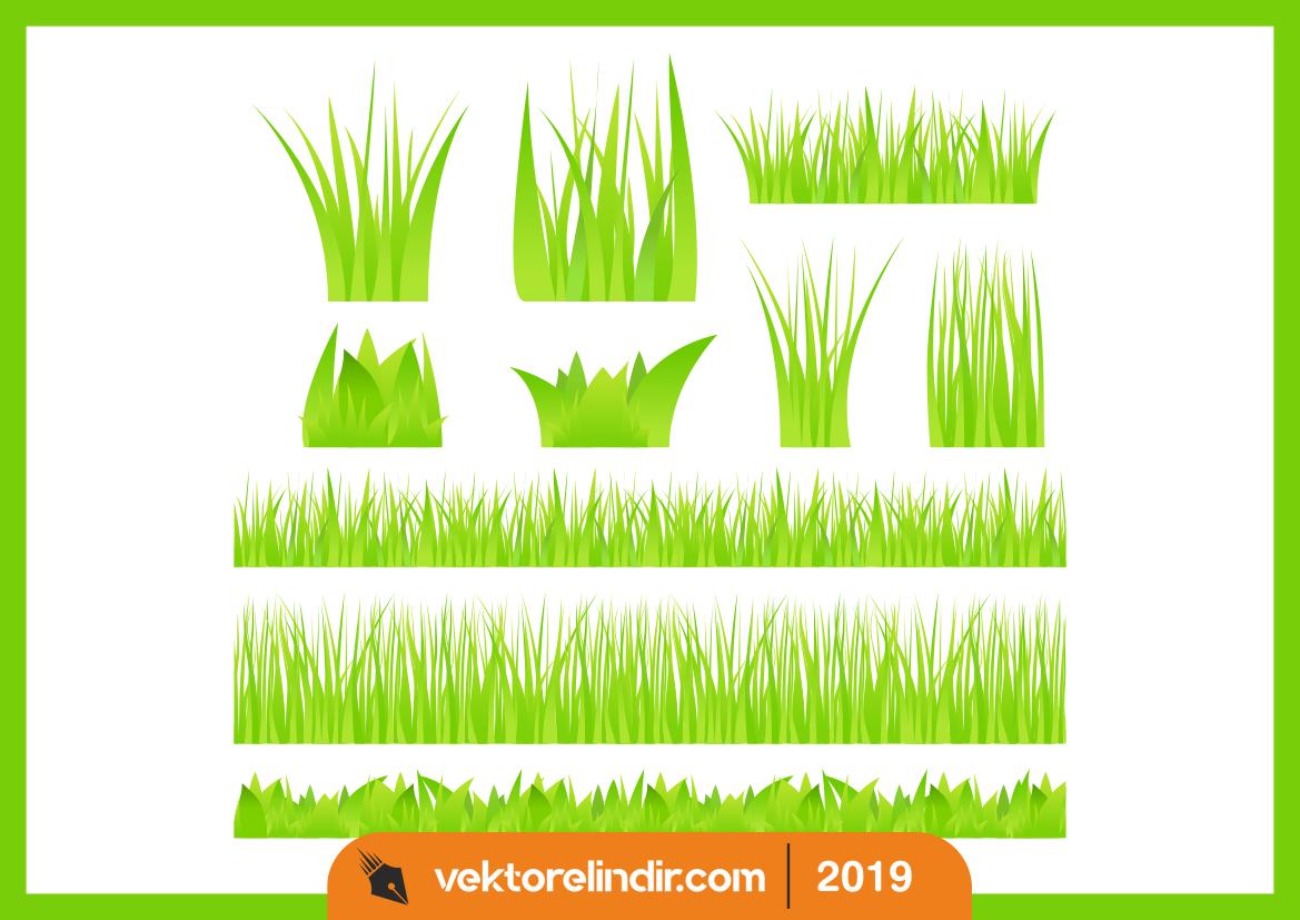 Çim, Yeşillik