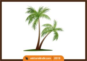 Palmiye Ağaç Vektörel